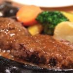 Shizuoka-Sawayaka-Hamburger-13.jpg