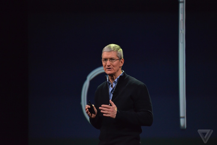 Tim Cook The Verge