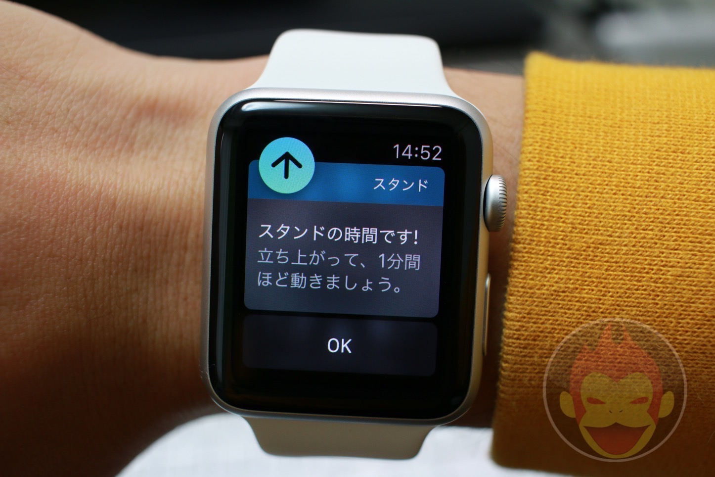 Apple Watch スタンド機能