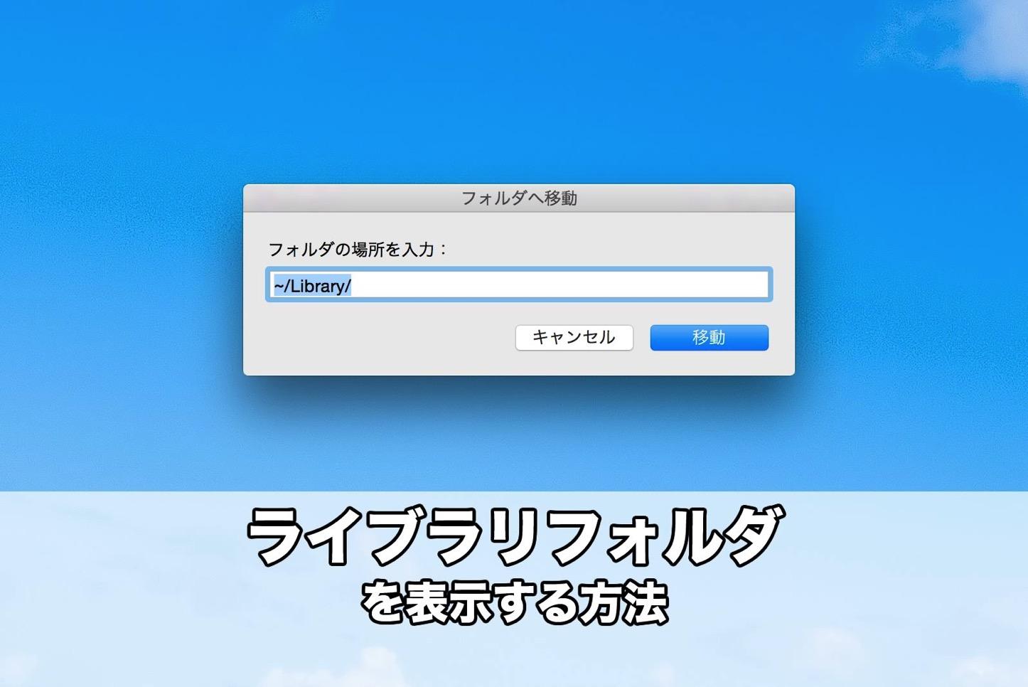 library-folder.jpg