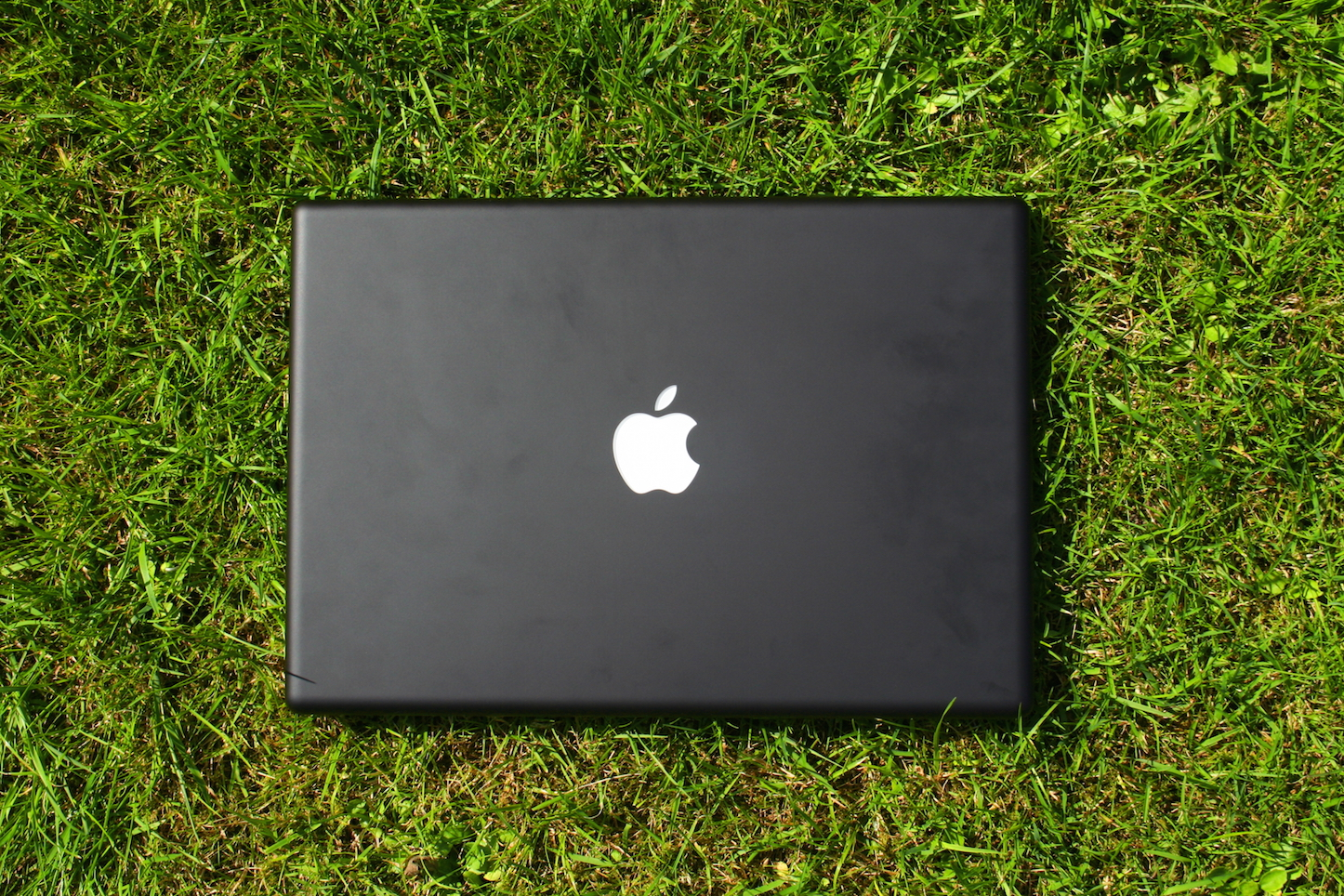 Macbook on grass