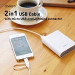 2-in-1-cable.jpg