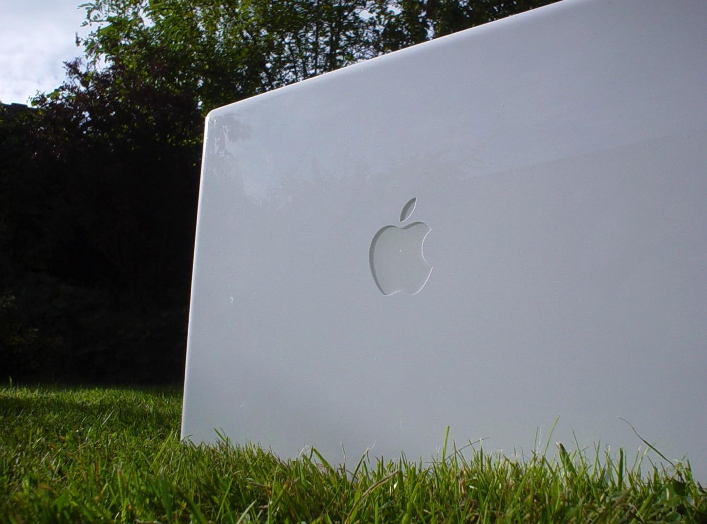 Macbook grass