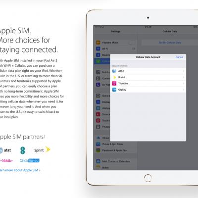 Apple-SIM01.png