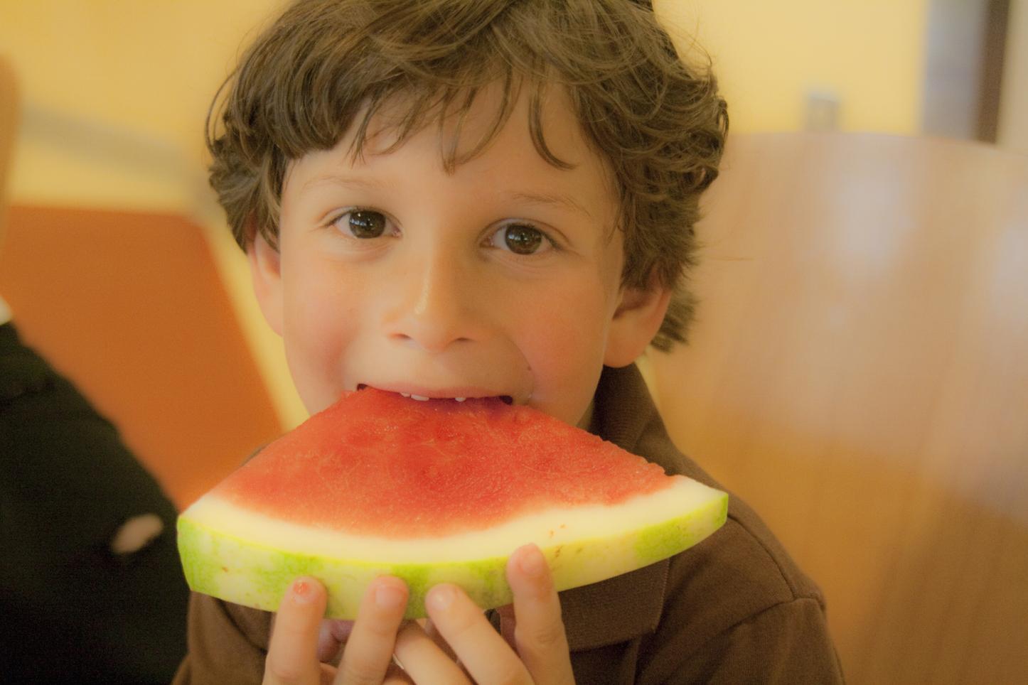 Macbook watermelon