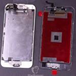 iphone_6_6s_displays_rear.jpg