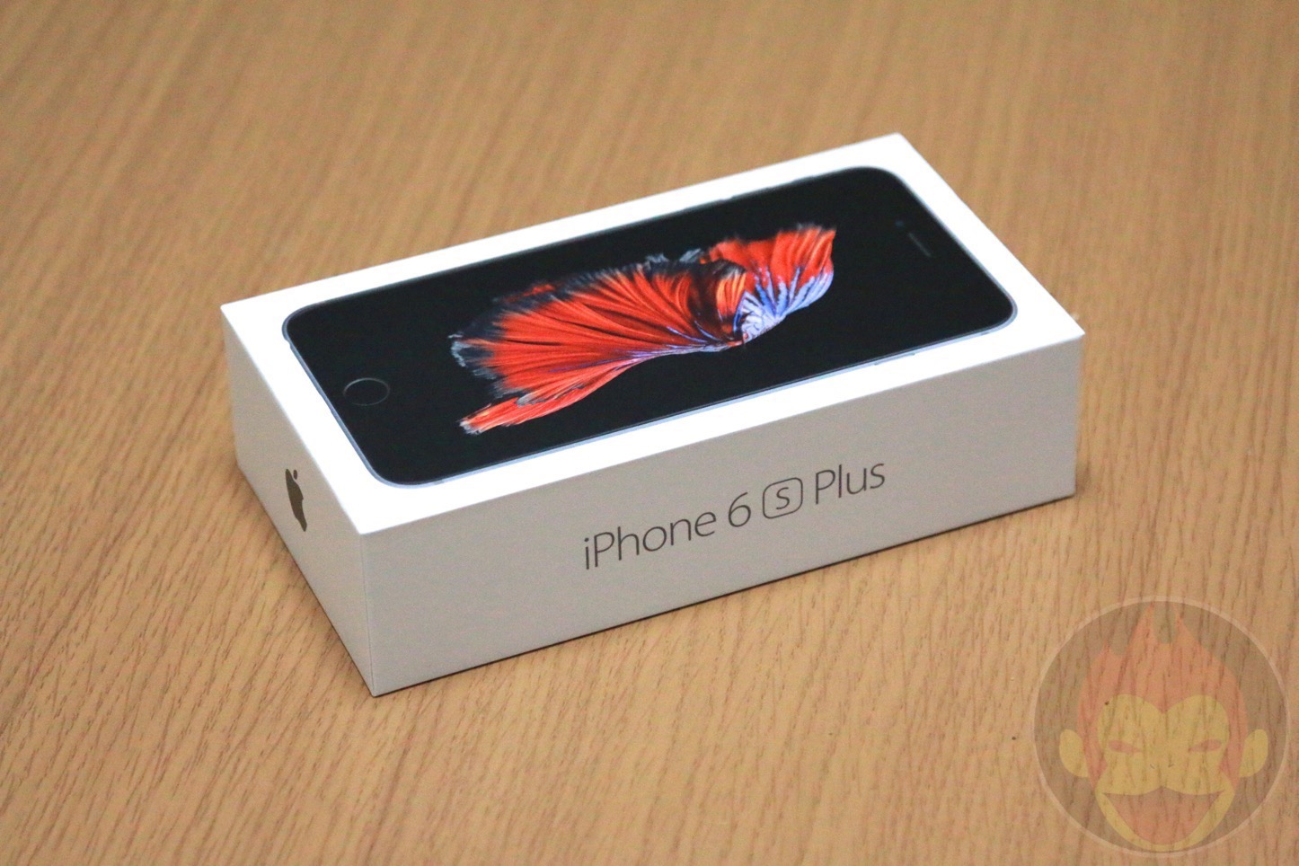 iPhone-6s-Plus-Photo-Review-01.jpg