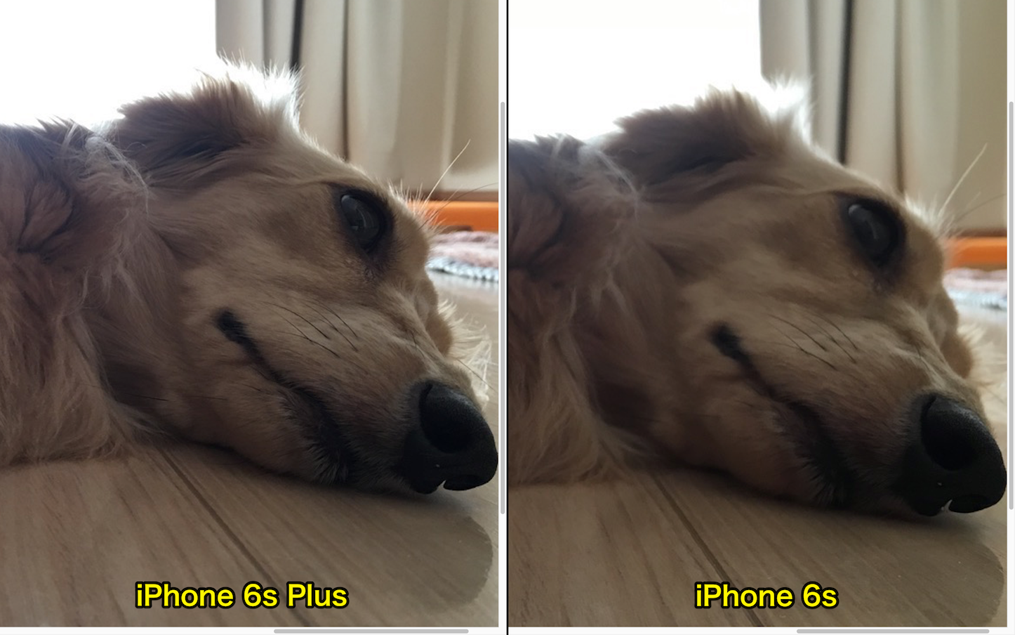 View iPhone6s6splus Photos