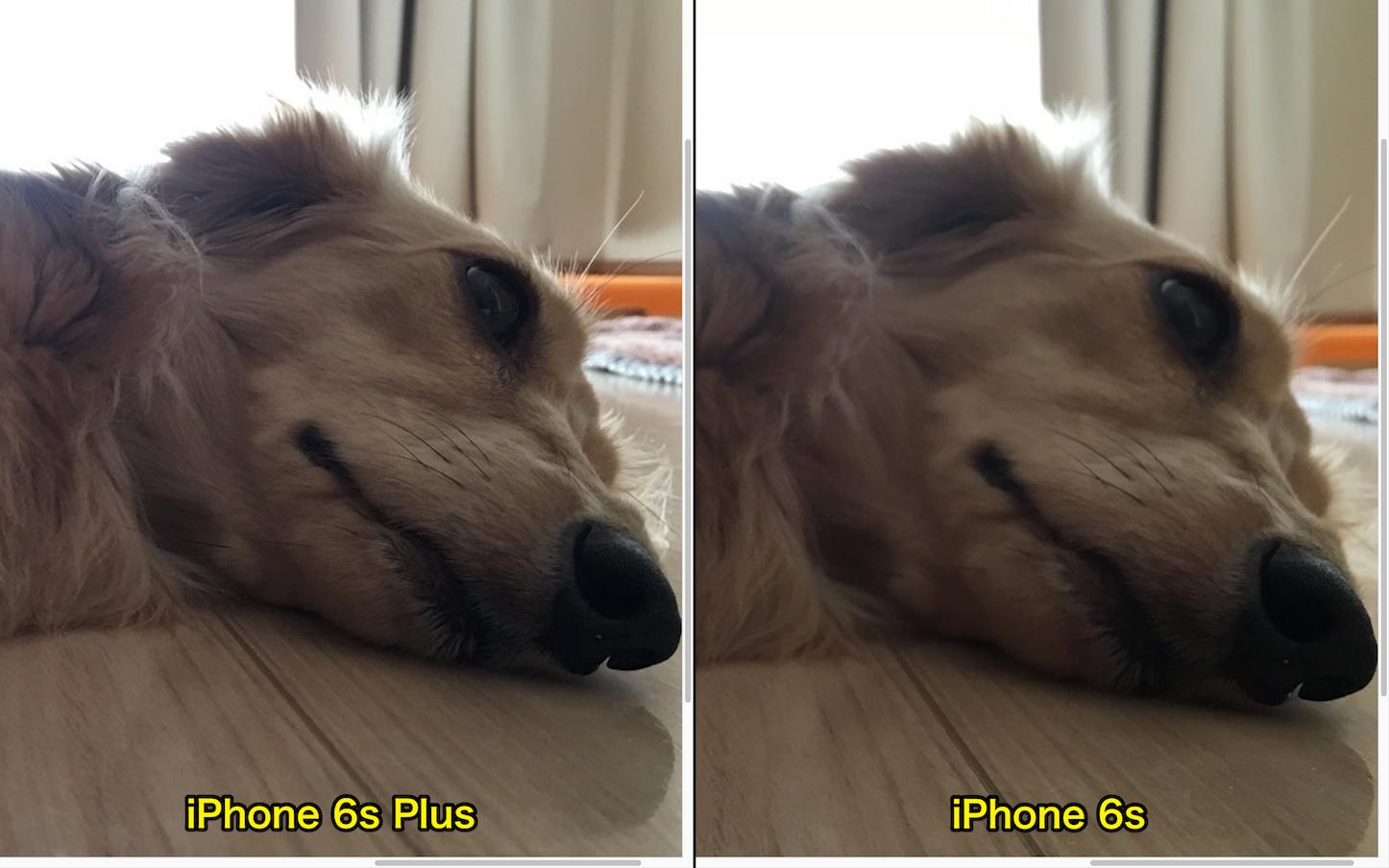 View iPhone6s6splus Photos