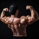 Body-Building-Free-Photos-17.jpg