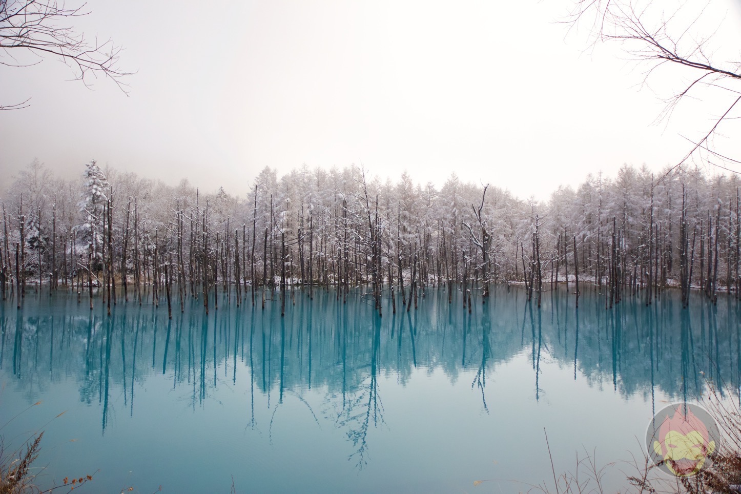 Blue-Pond-Hokkaido-04.jpg