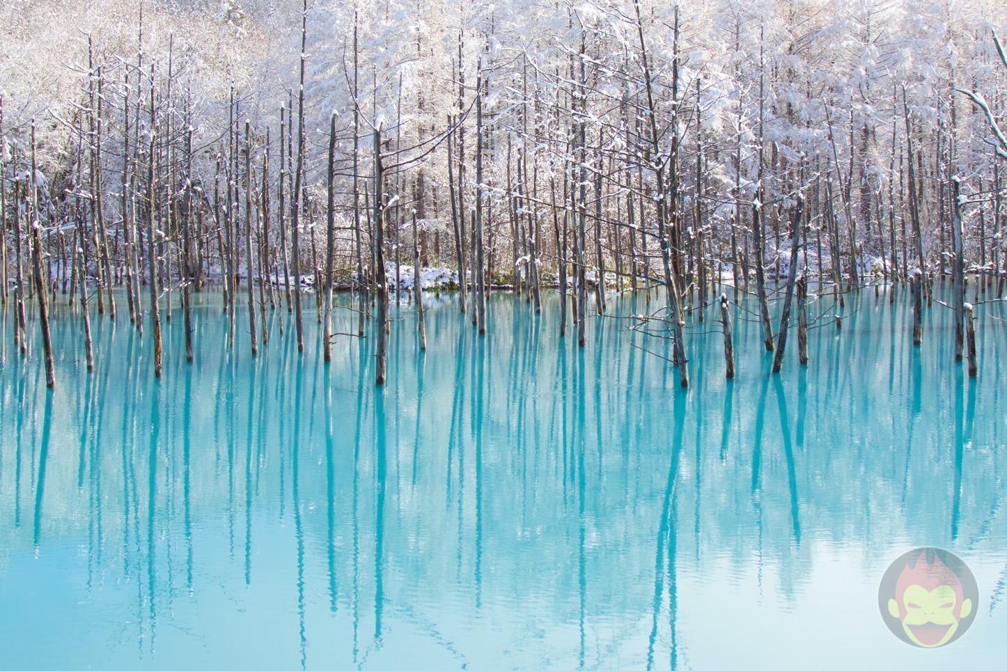Blue-Pond-Hokkaido-08.jpg
