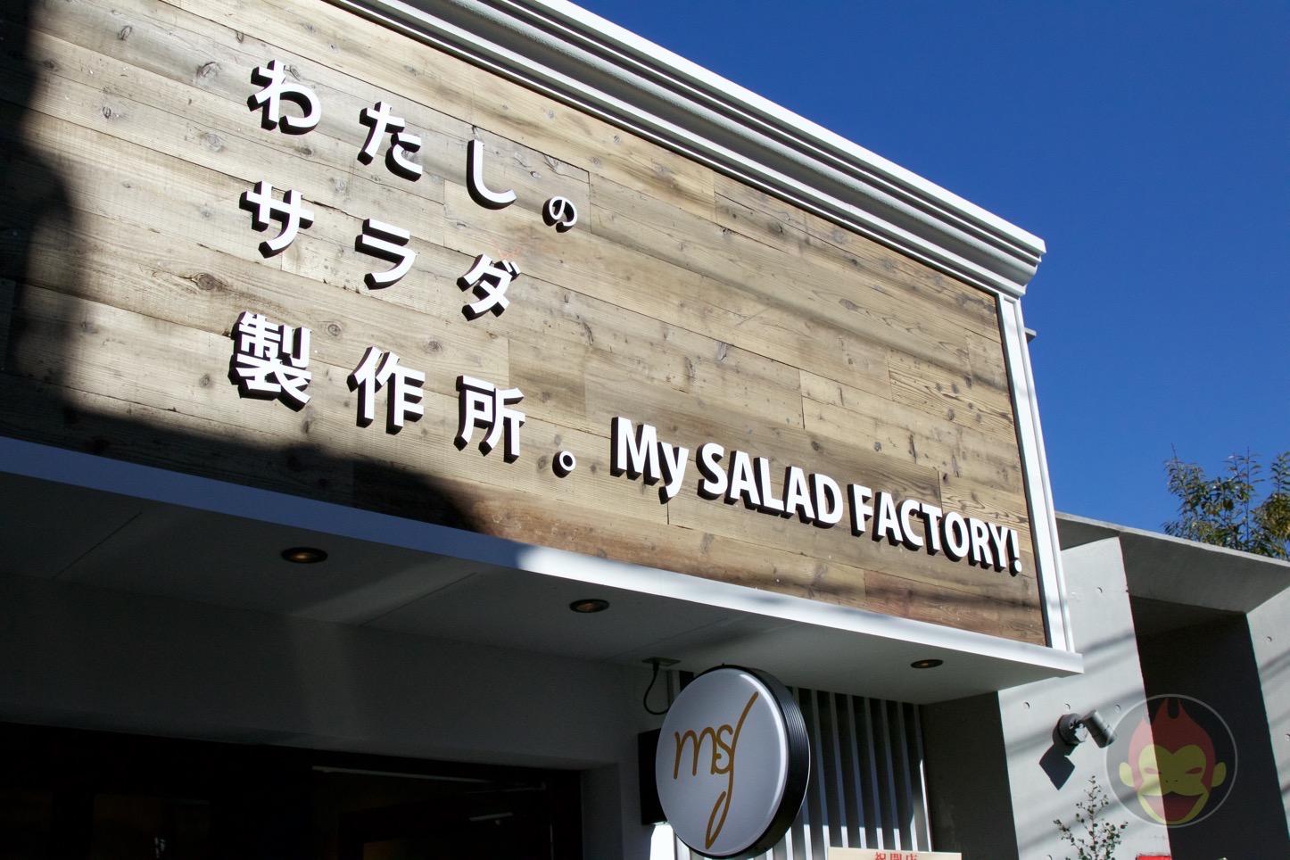 わたしのサラダ製作所。My SALAD FACTORY!