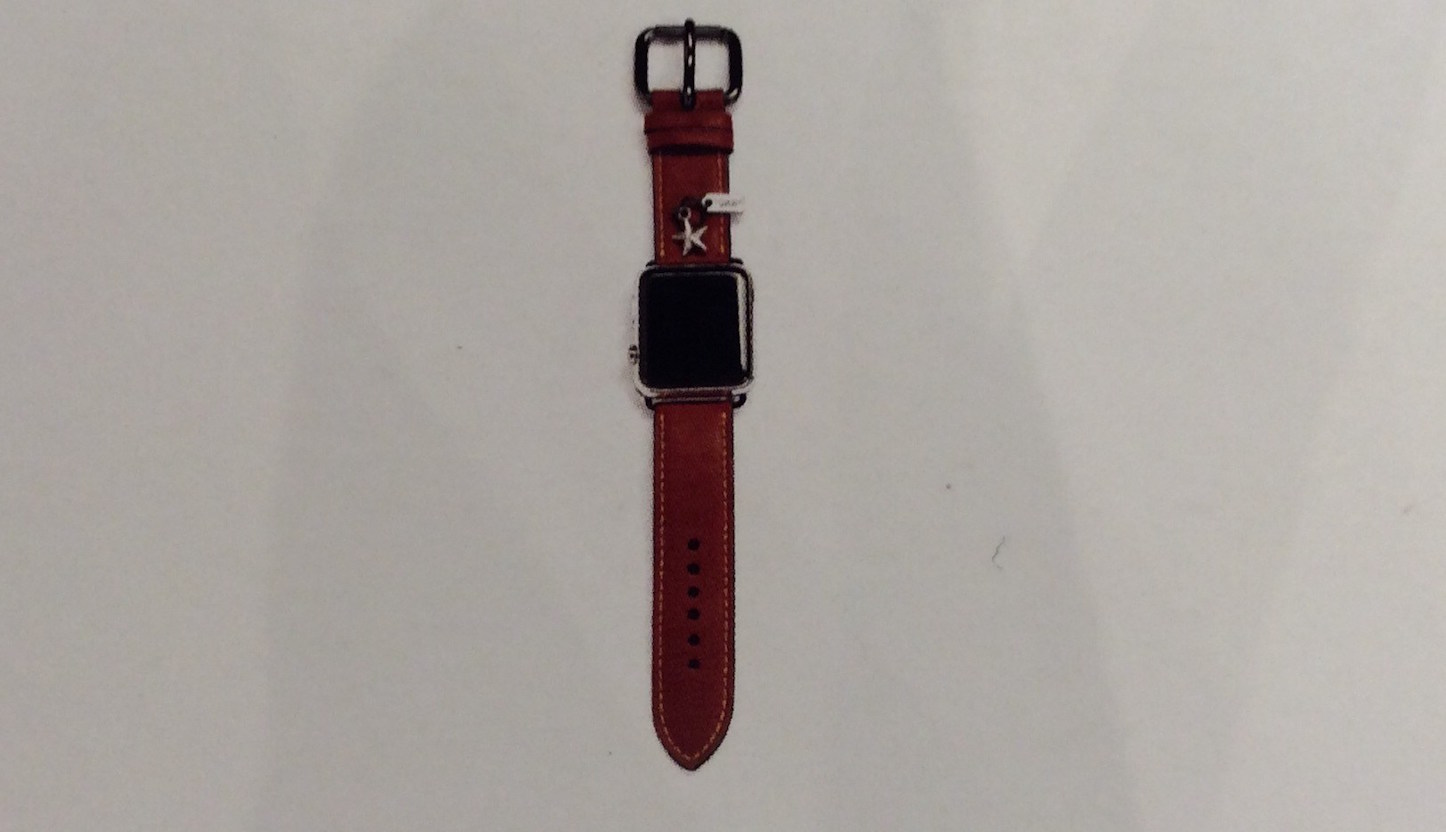 Apple Watch Coach Model