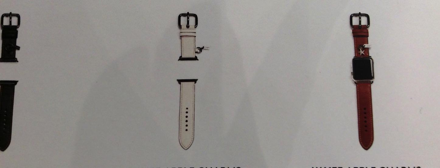 Apple Watch Coach Model