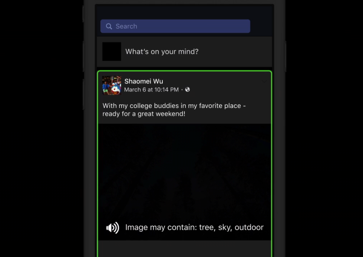 Facebook Automatic Alt Text