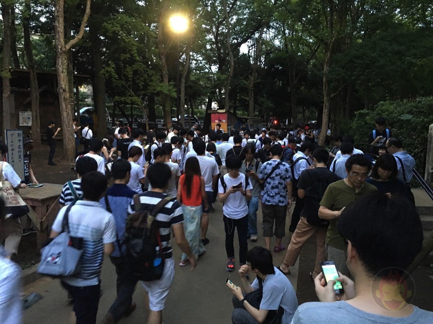 世田谷公園がポケモンGOであふれていた