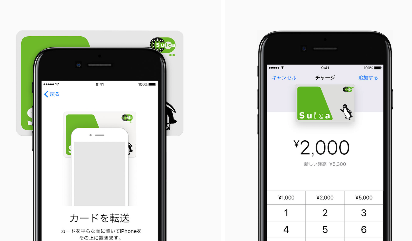 Apple Pay In Japan