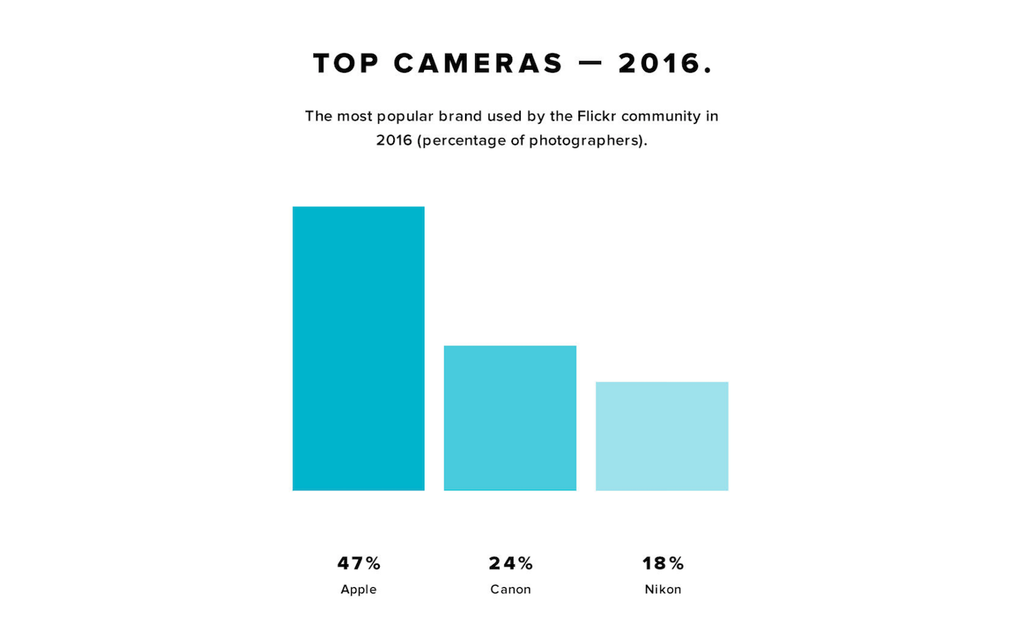 Flickr Year in Review