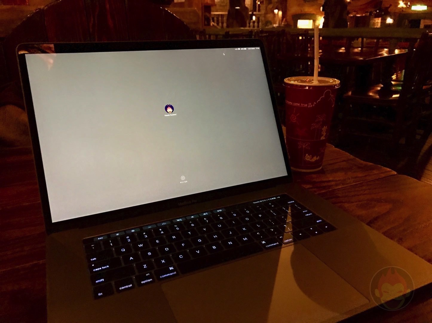 Using MacBookPro2016 15inch at disney
