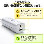 Sanwa-Direct-Audio-Jack-Adaptor-2