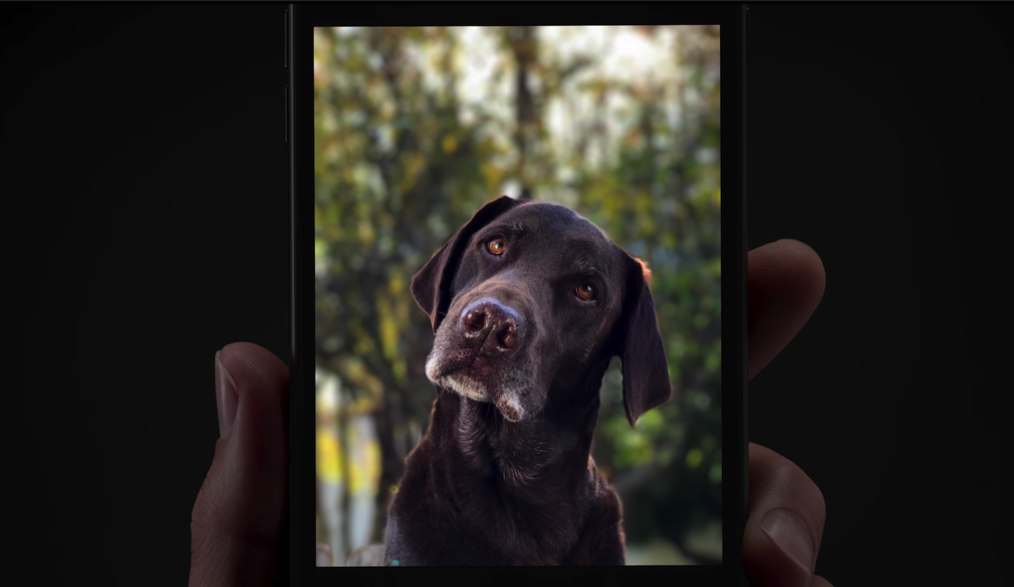Portrait mode on iPhone7Plus