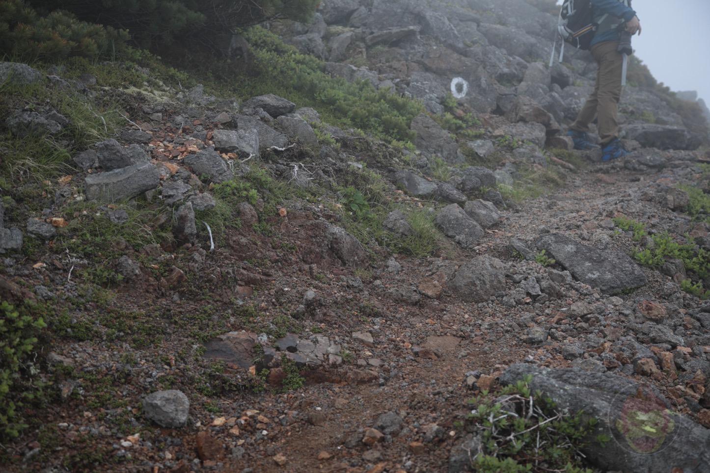 乗鞍新登山道整備2017:道なき道2