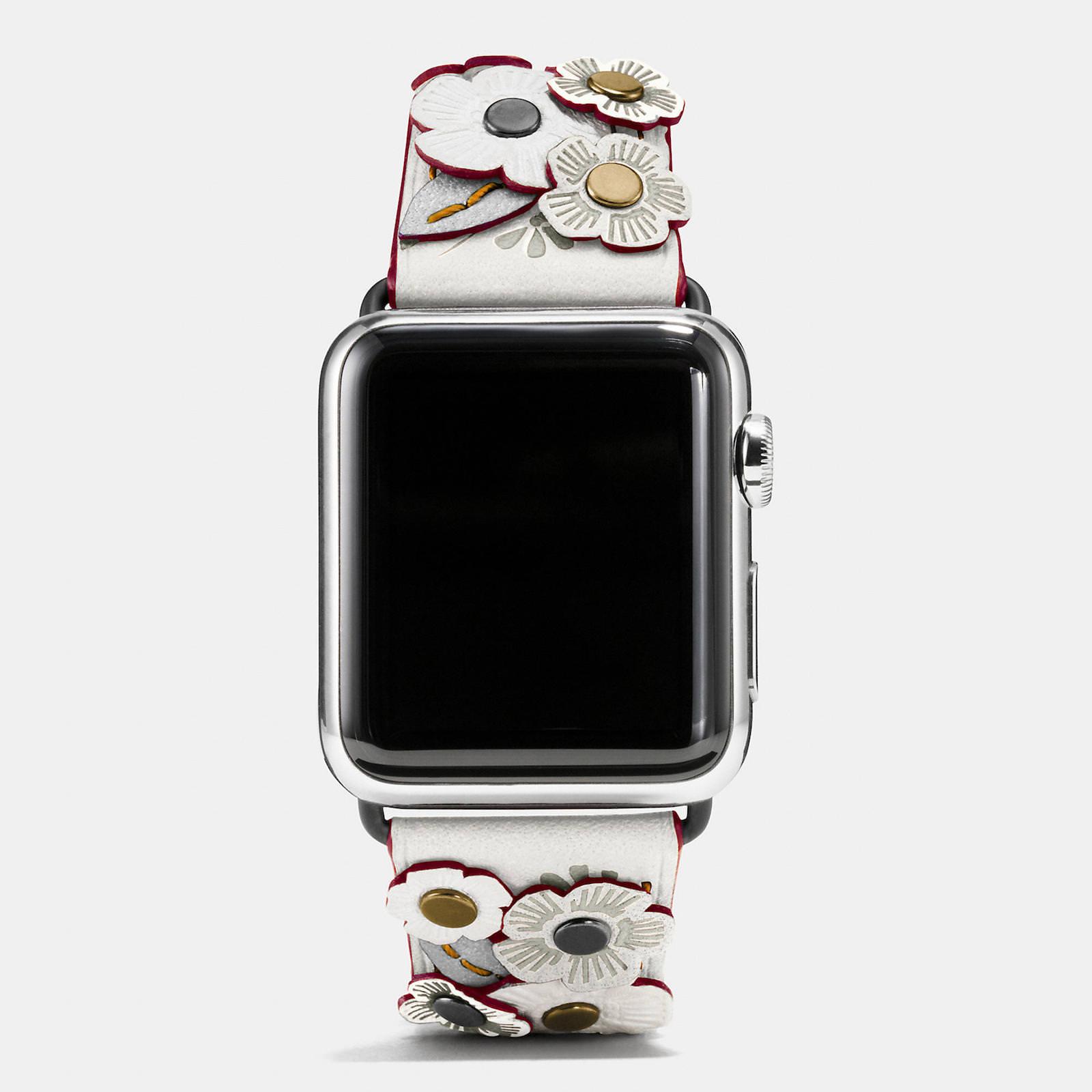 Apple-Watch-Coach-Band-Autumn-Season-11.jpeg