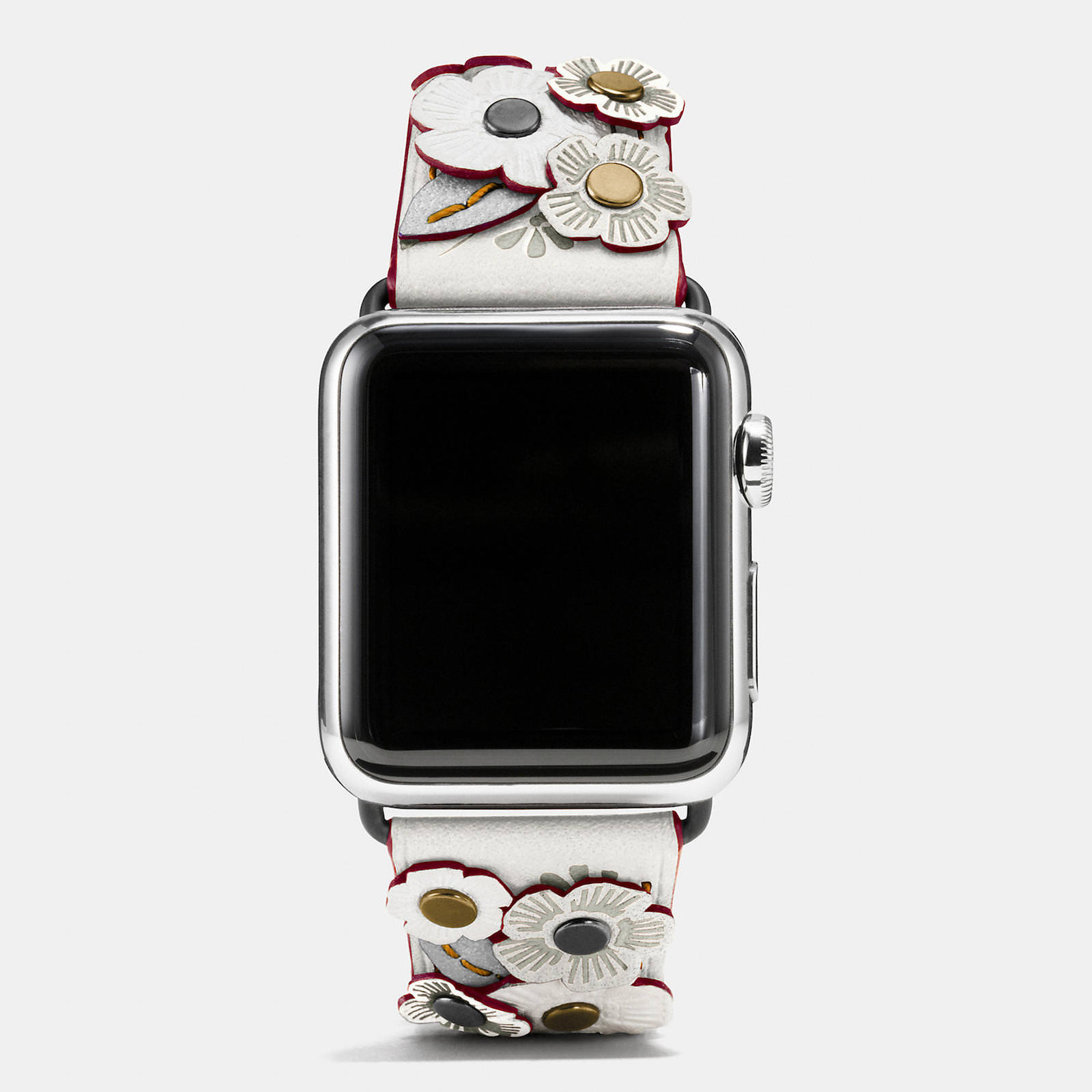 Apple-Watch-Coach-Band-Autumn-Season-12.jpeg