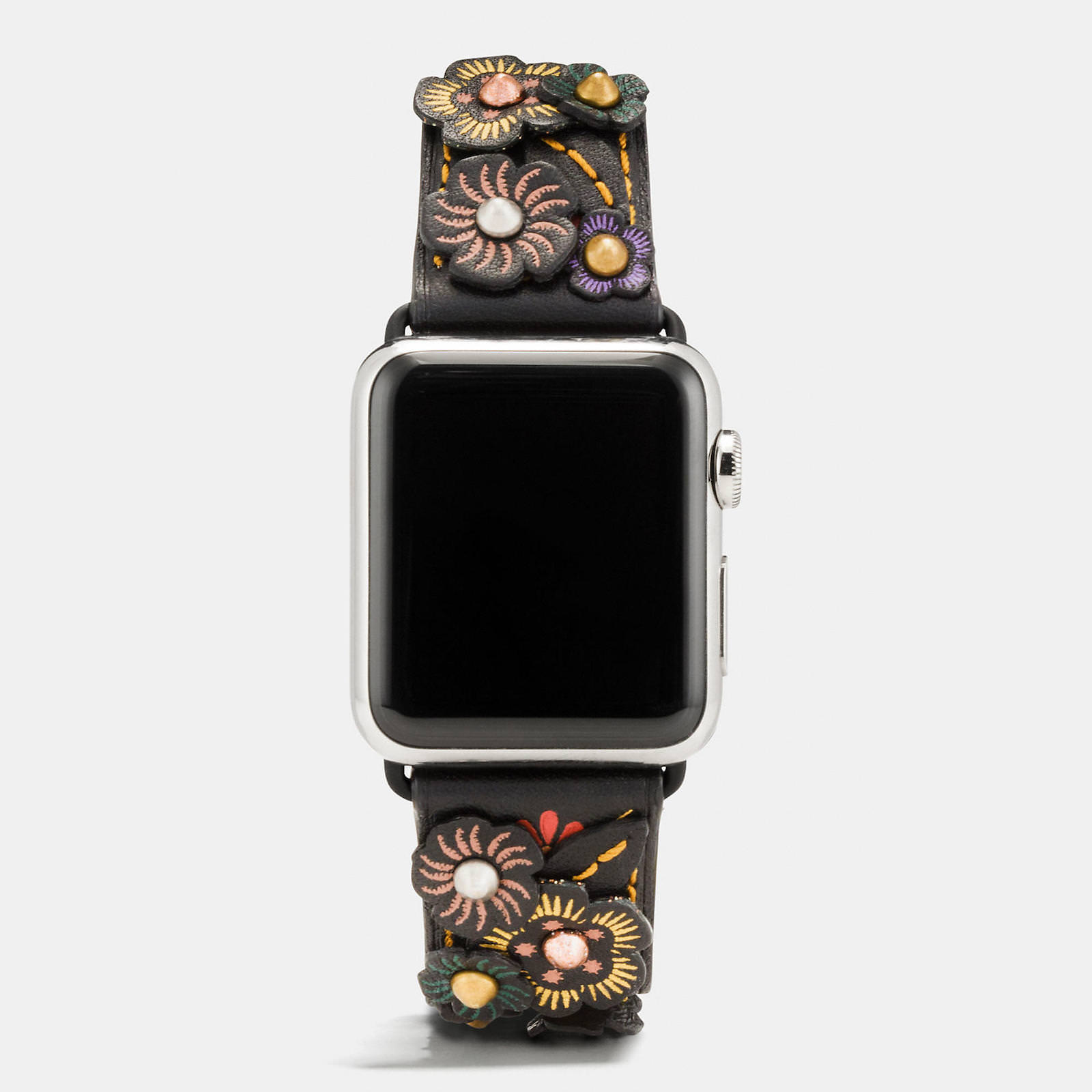 Apple-Watch-Coach-Band-Autumn-Season-2.jpeg