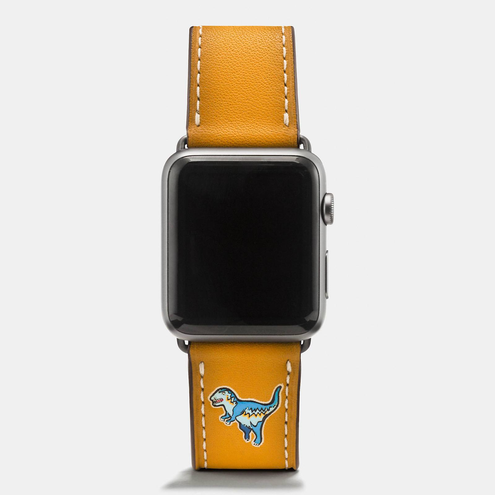 Apple-Watch-Coach-Band-Autumn-Season-3.jpeg
