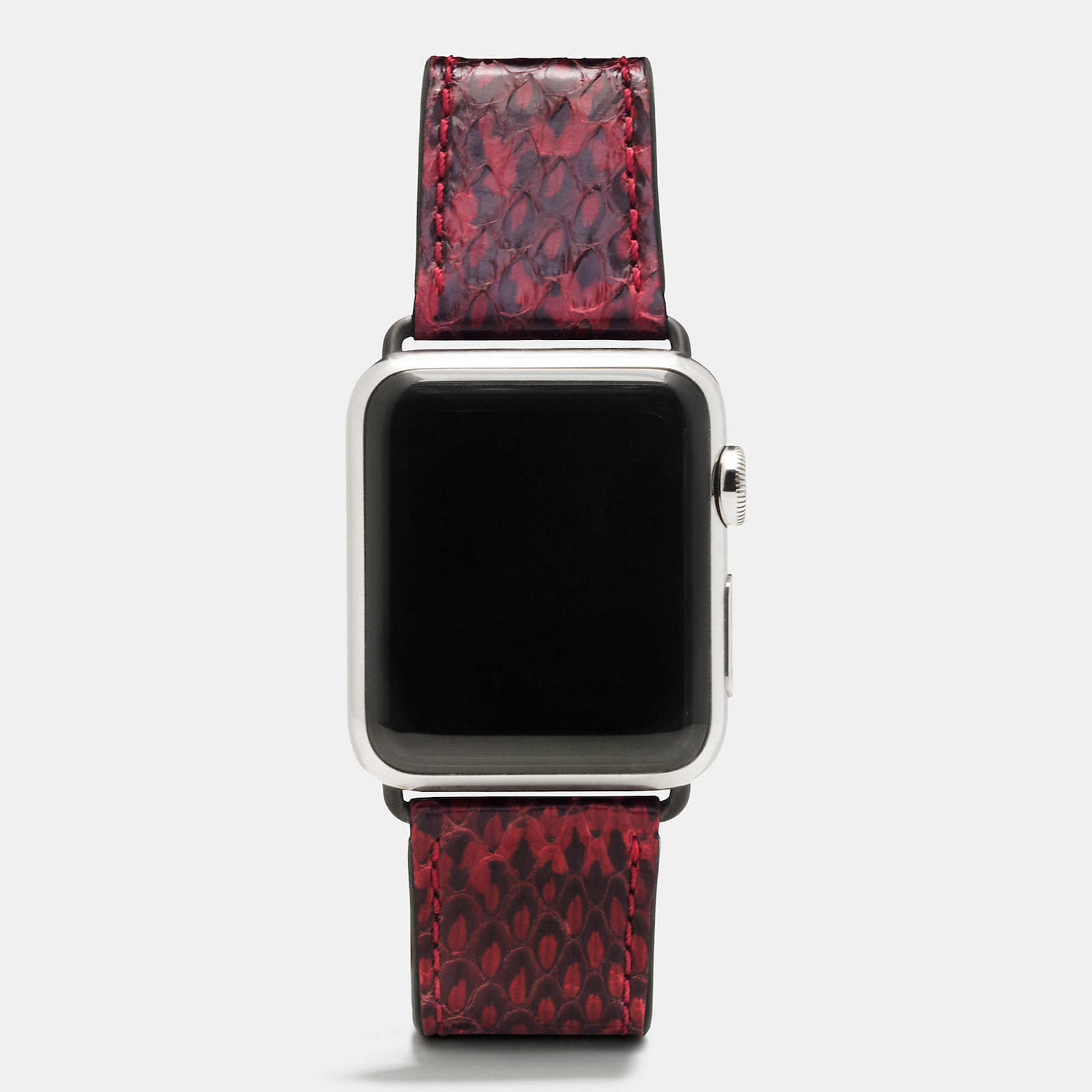 Apple-Watch-Coach-Band-Autumn-Season-4.jpeg