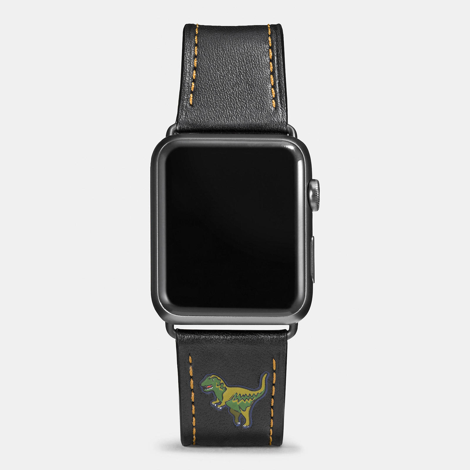 Apple-Watch-Coach-Band-Autumn-Season-8.jpeg