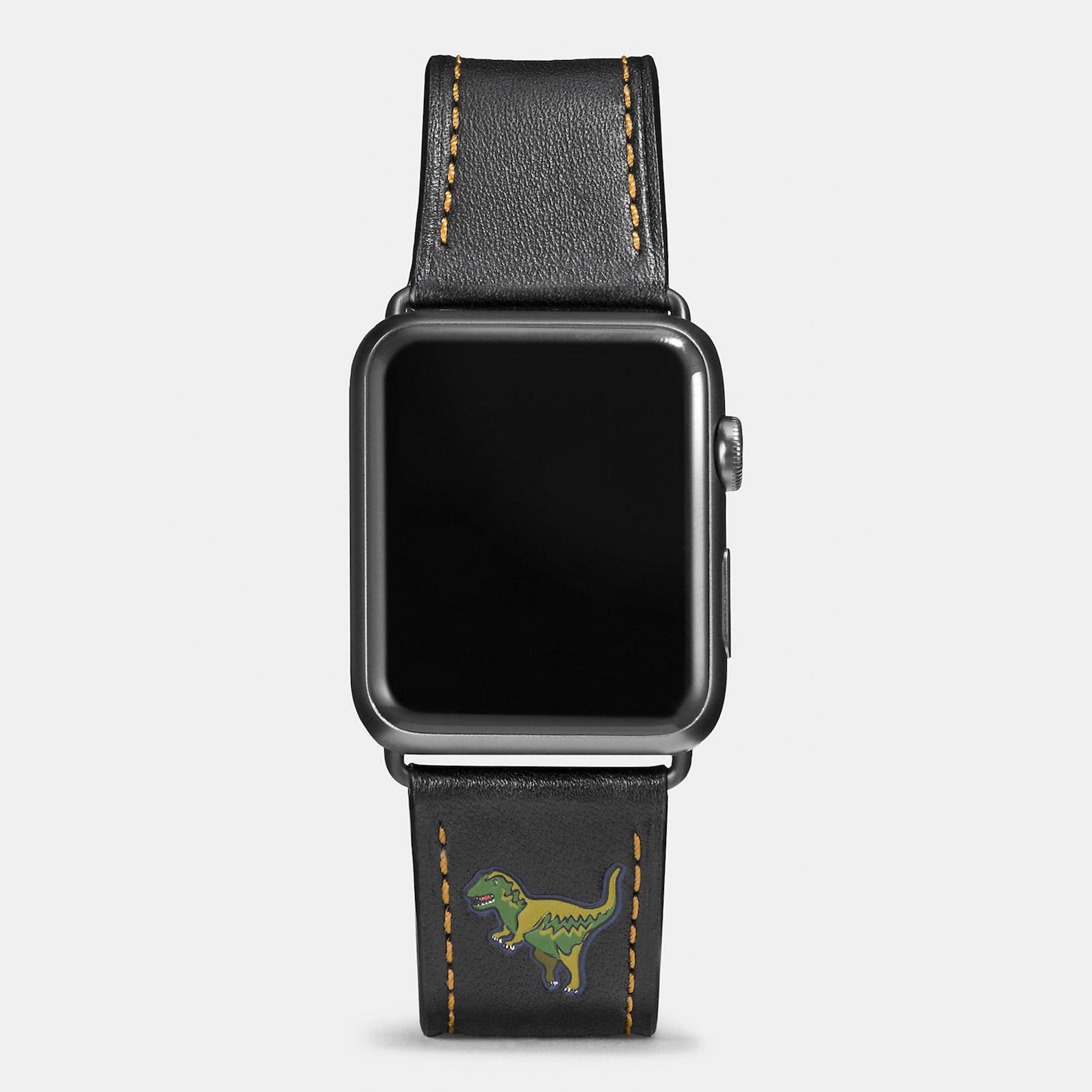 Apple-Watch-Coach-Band-Autumn-Season-8.jpeg