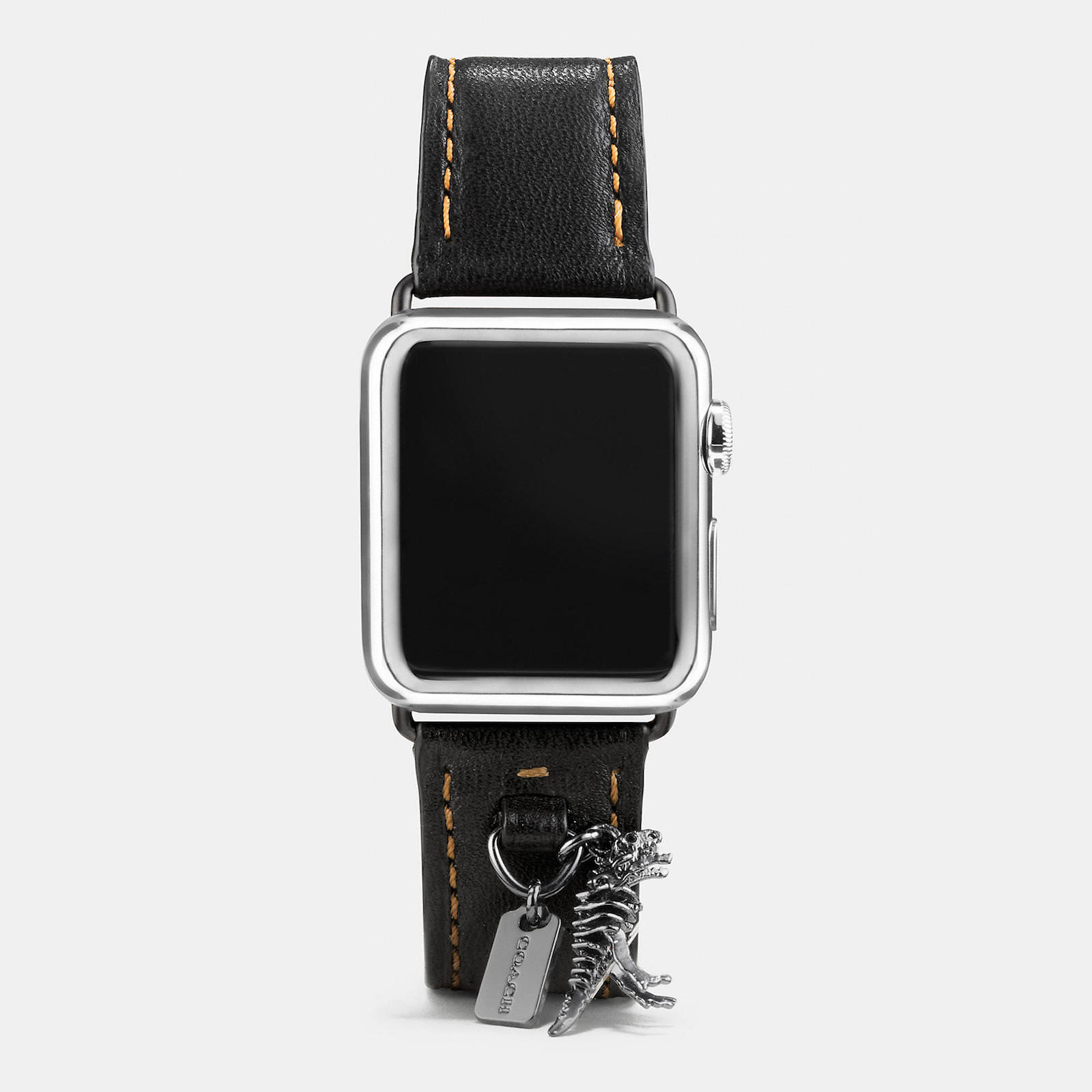 Apple-Watch-Coach-Band-Autumn-Season-9.jpeg