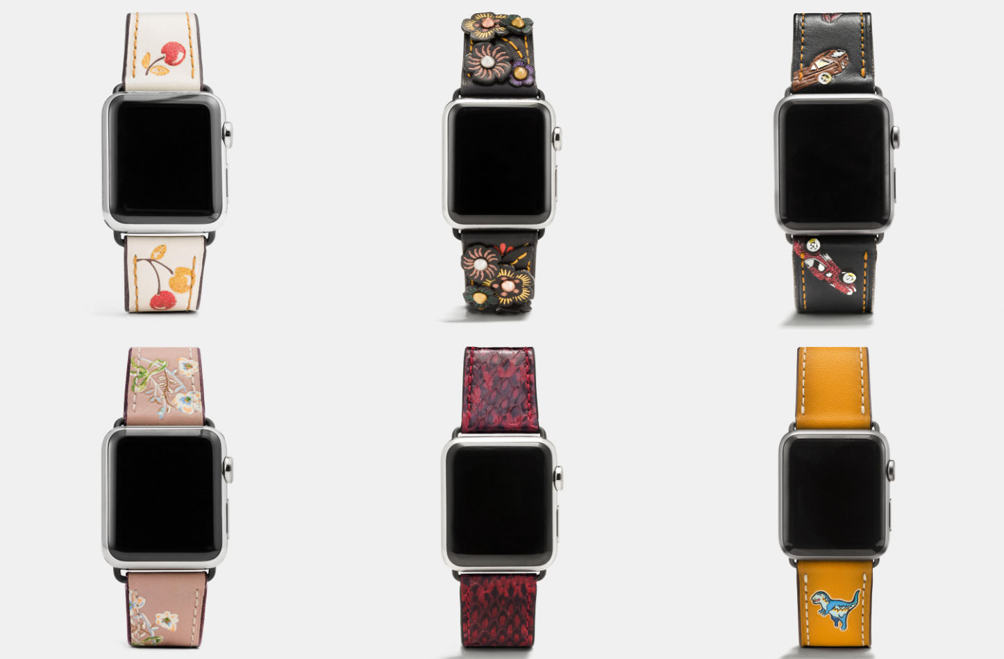 Apple Watch Coach Band Autumn Season
