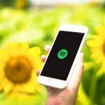 Spotify-and-Sunflowers.jpg