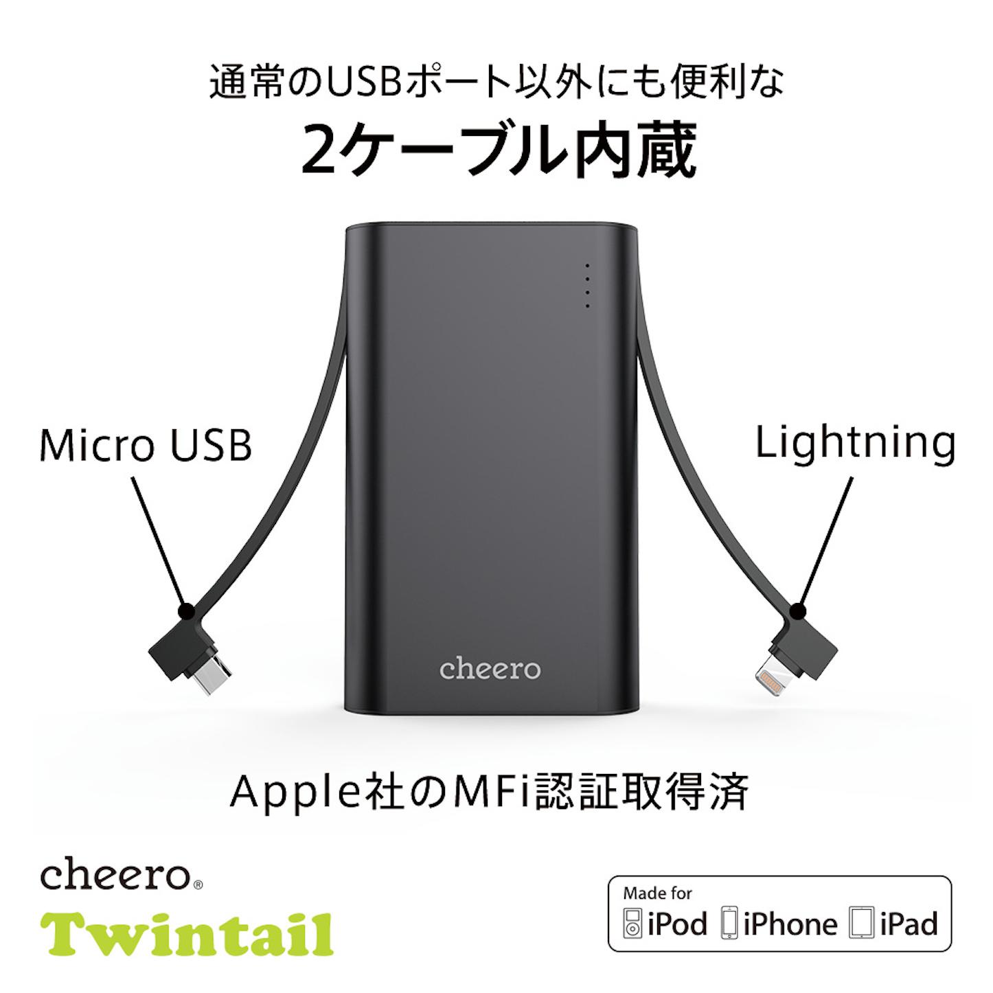 089 Twintail 10050 amazon03