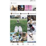 Explore-tab-on-instagram.jpg