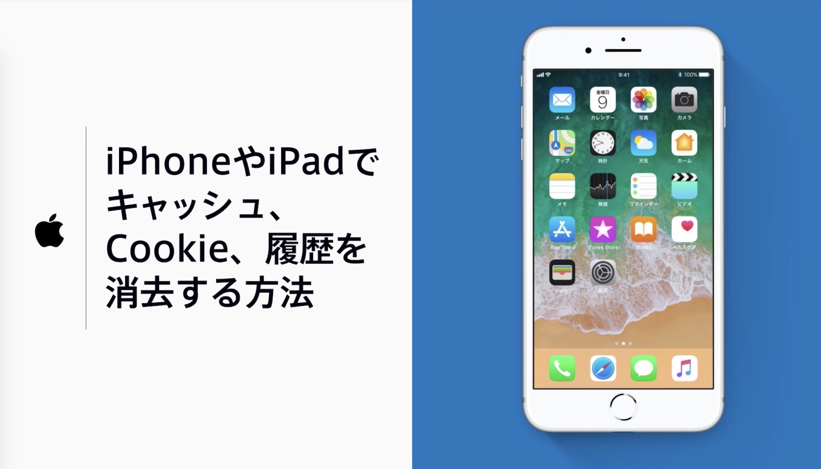 iphone-cookie-delete-howto.jpg
