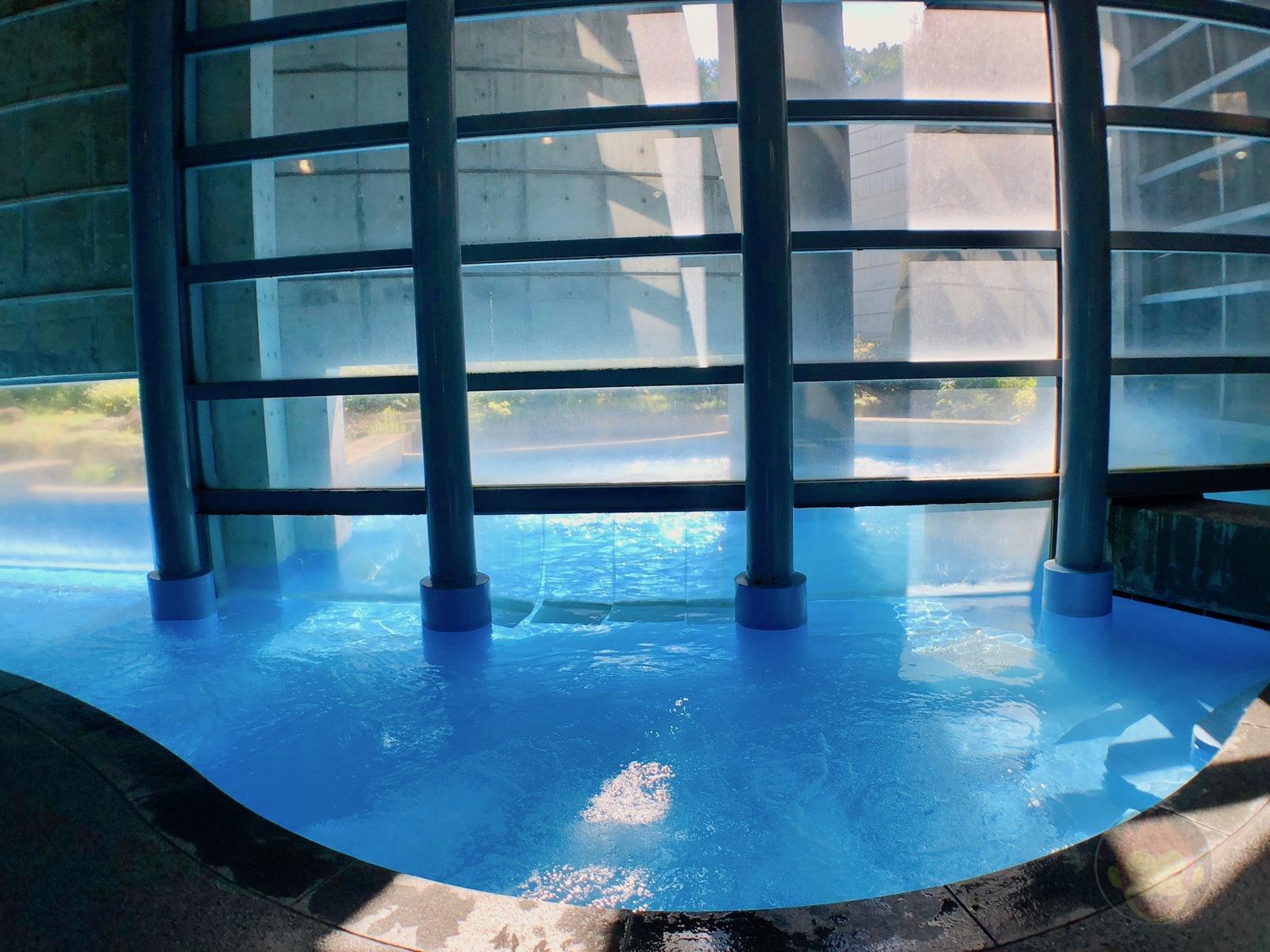 Hoshino Resonalre Yatsugatake Pool 01