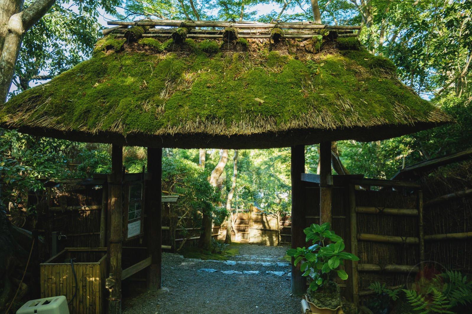 Kyoto Arashiyama Gioji 02