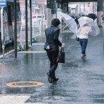 taihu-0I9A5591_TP_V-typhoon.jpg