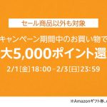 Point-Up-Campaign-Amazon-TimeSale-201902.jpg