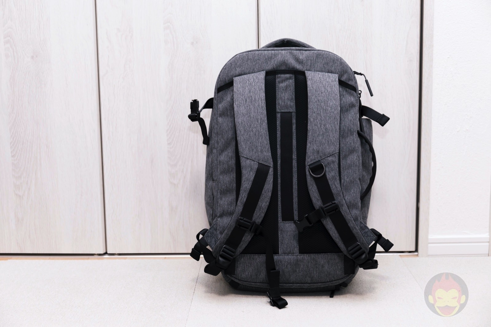 Aer Travel Pack 2 Backpack Review 06