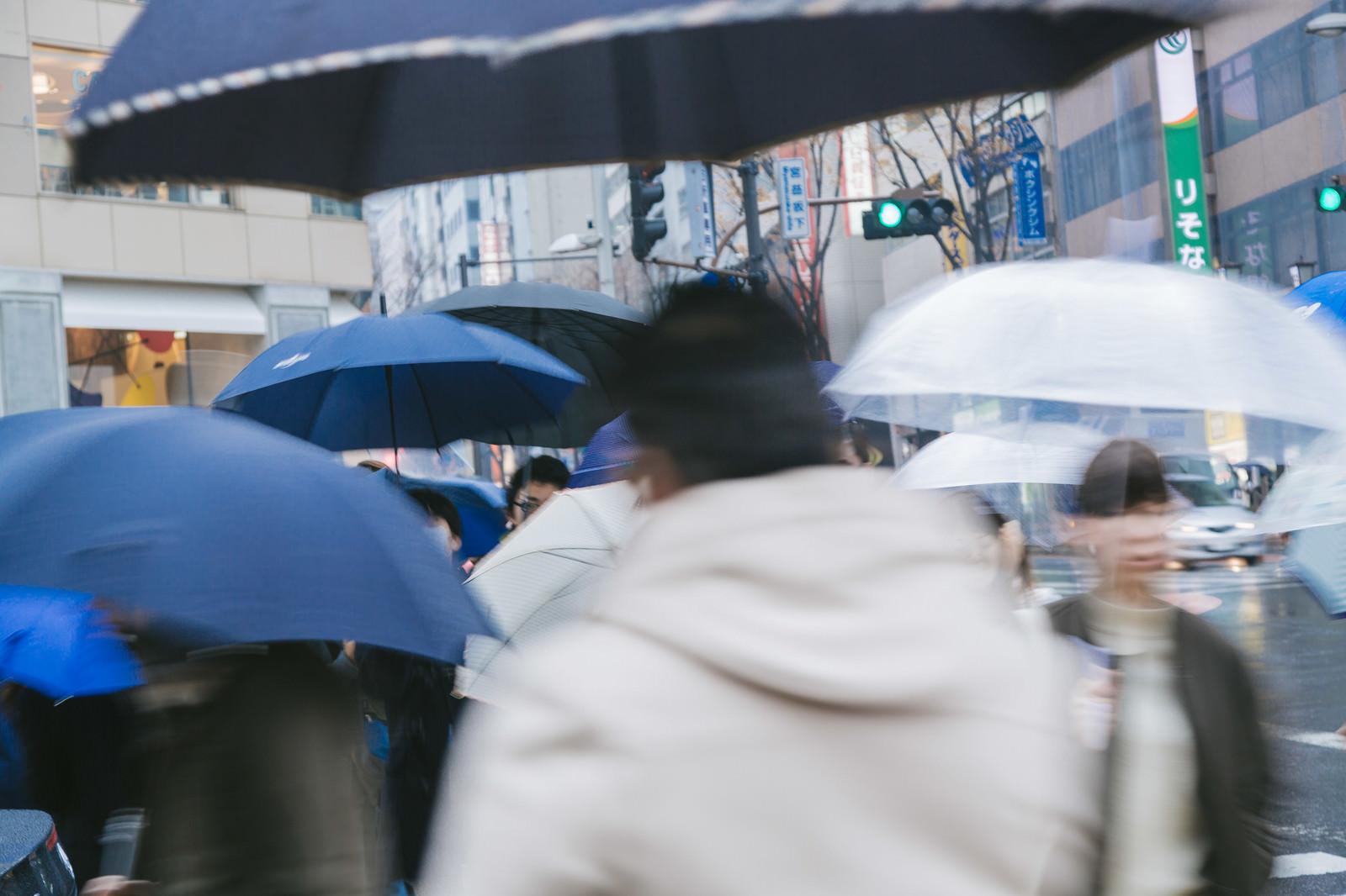 Amehuru0I9A4492 TP V rain and umbrella