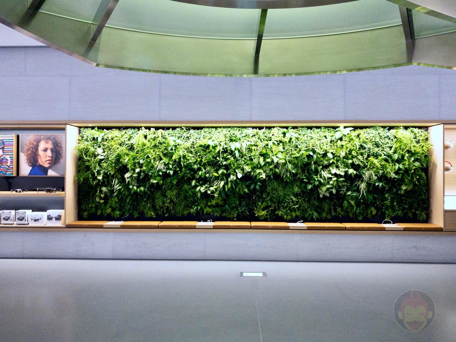 Apple Store Omotesando Basement floor renewal 50