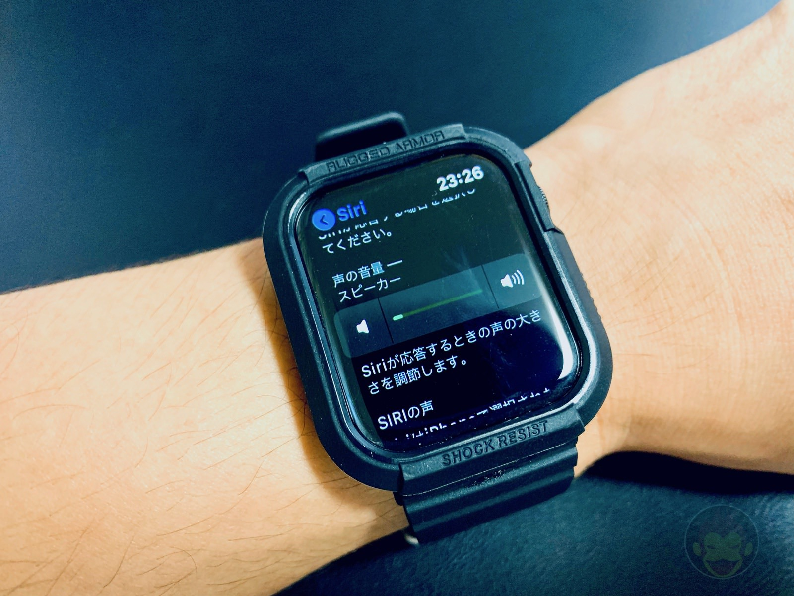 How to change Siri volume on Apple Watch 06