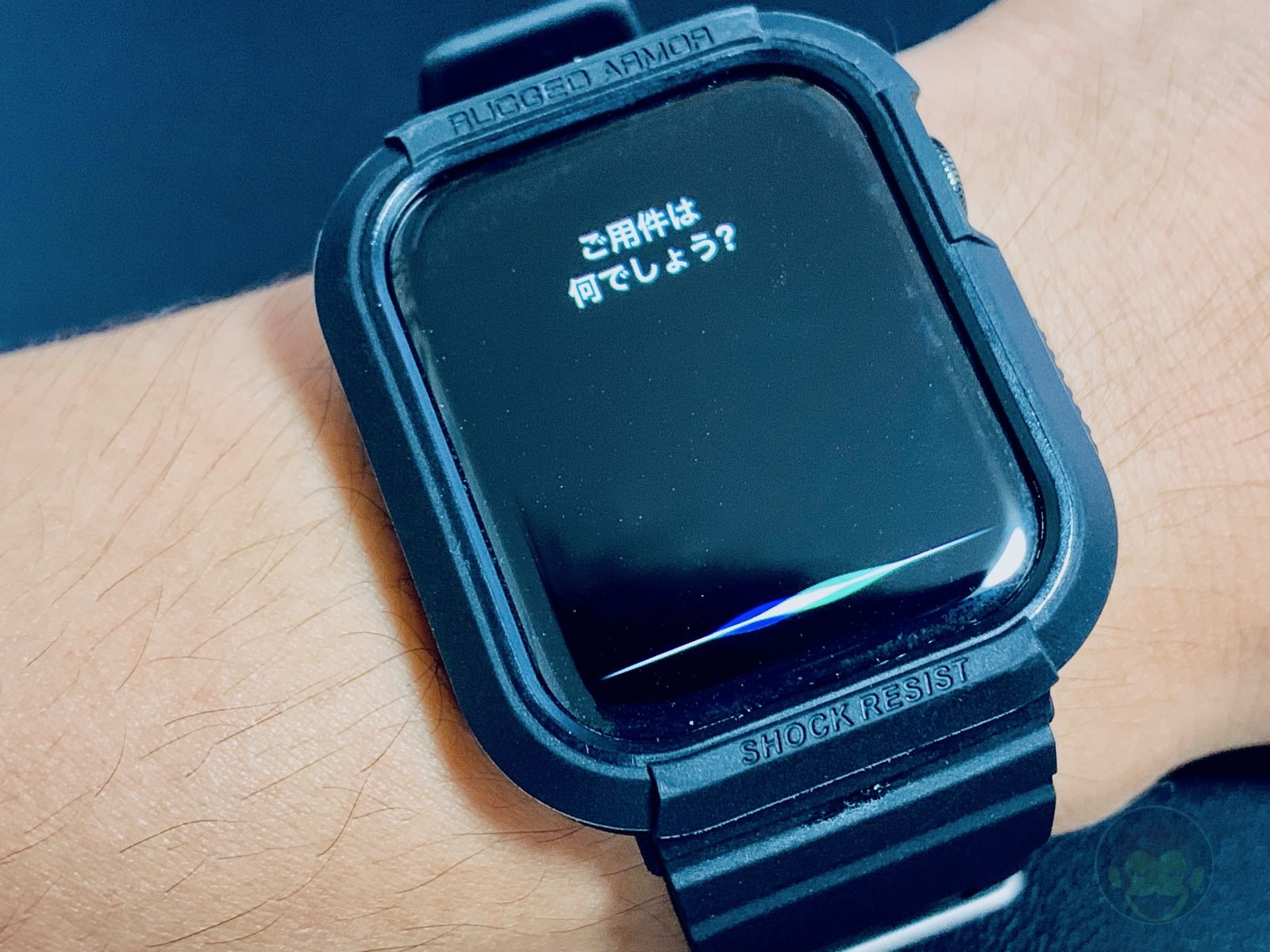 How to change Siri volume on Apple Watch 07
