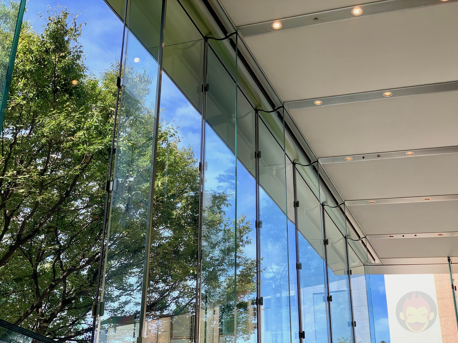Apple Omotesando Video Wall Renewall 16